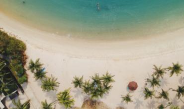 plage plamiers mer eau bleu sable aout