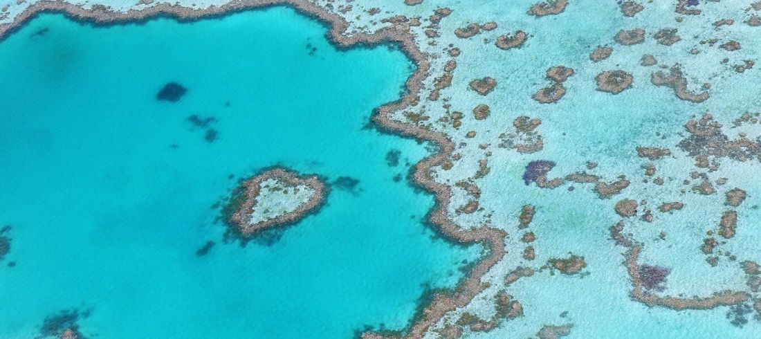 Barrière de Corail Cairns eau turquoise paradisiaque