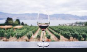 degustation vin vignoble eau montagne rouge verre
