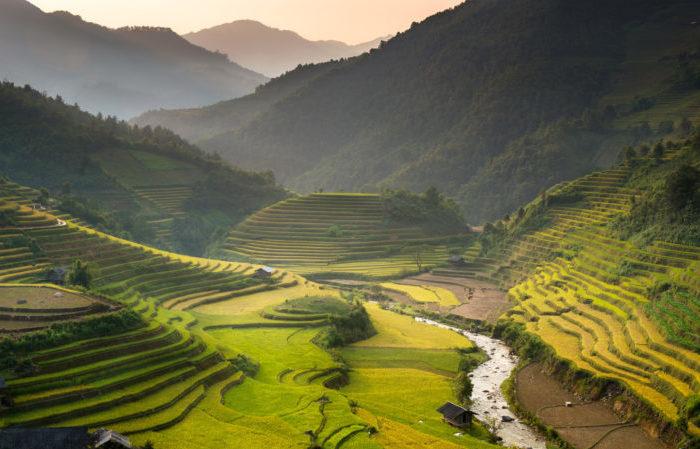 Premiers pas au Vietnam - Asie Online