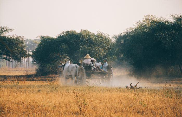 Culture et randonnée en Birmanie - Asie Online