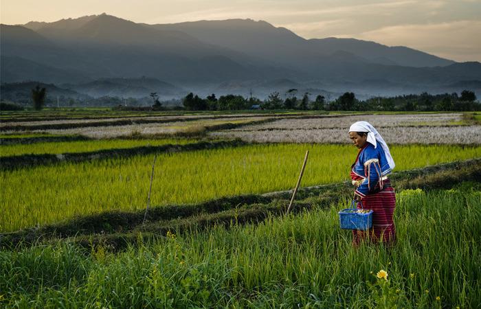 Un été en Birmanie - voyage Asie