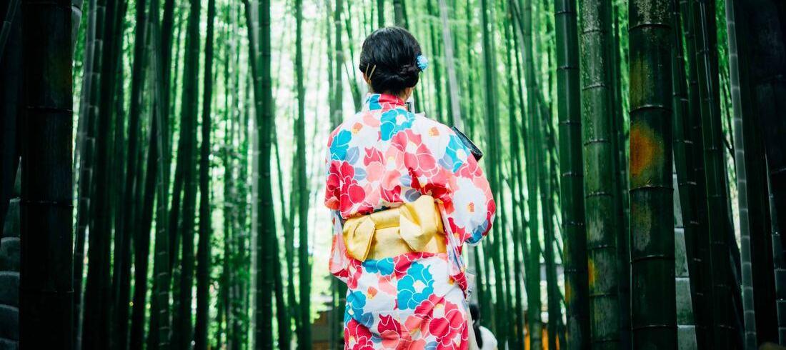 Geisha dans la forêt de bambous - voyage Japon