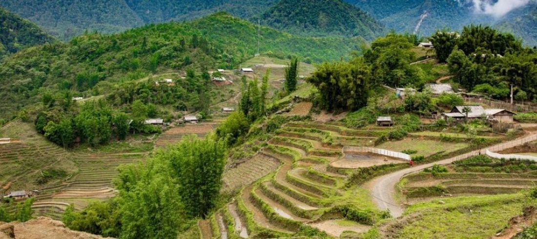 Rizières en terrasses - voyage Vietnam