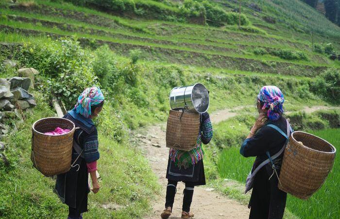 Le Vietnam, de Sapa au Delta du Mékong - Asie Online