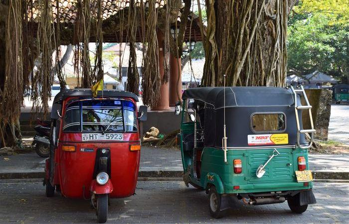 Un été au Sri Lanka - Asie Online
