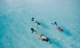 activite snorkeling palme masque maillot bain eau