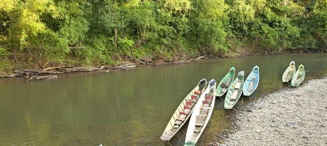 Batang Ai - voyage Malaisie