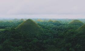 Excursion montagne vegetation randonnee