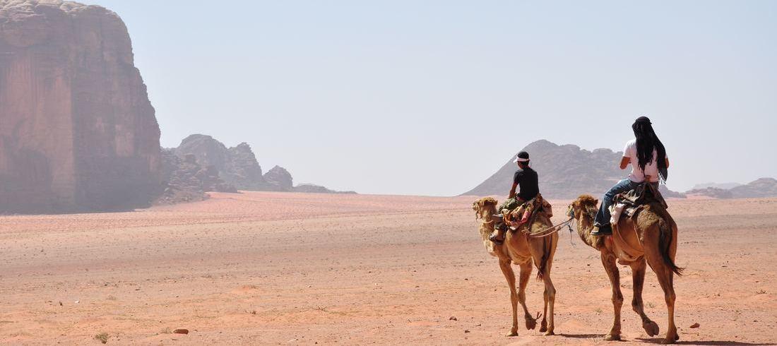 Chameaux dans le désert de Wadi Rum - voyage Jordanie
