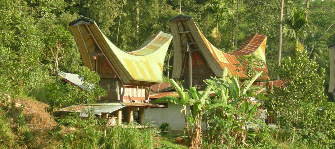 Maisons traditionnelles pays Toraja Célèbes Sulawesi
