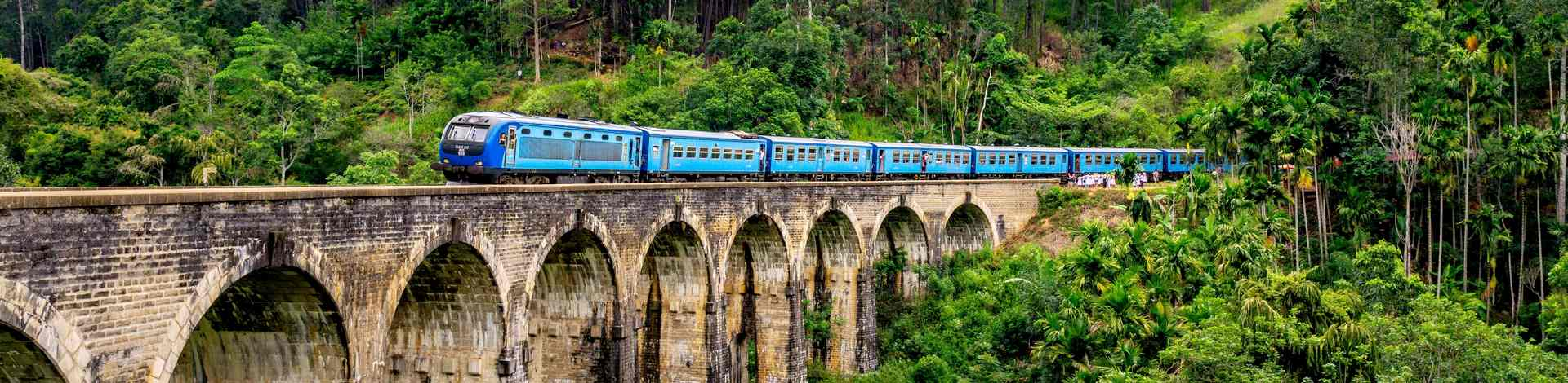 Train local Sri Lanka végétation Nuwara Eliya Ella