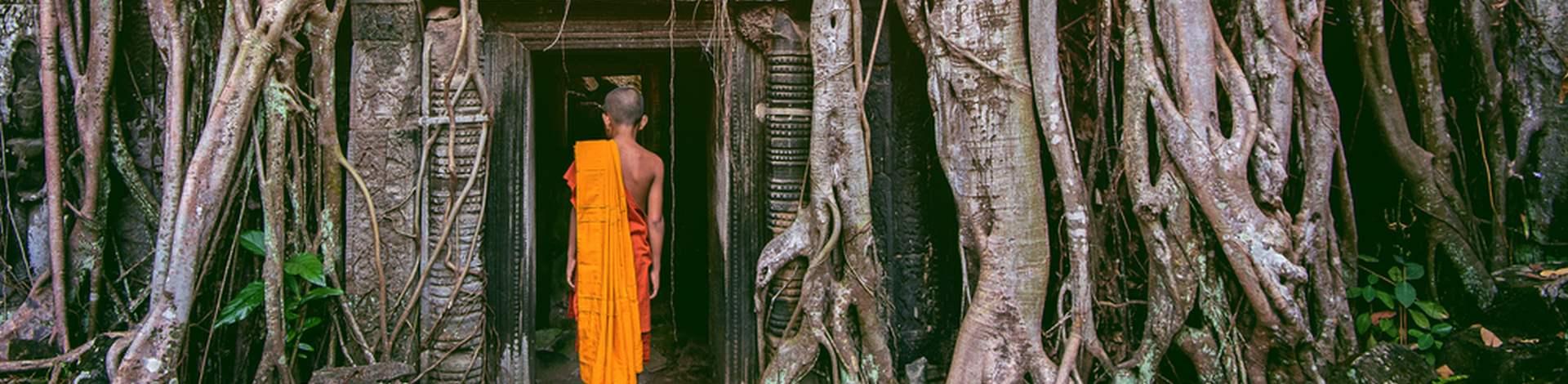 Temples Angkor Cambodge Ta Prohm