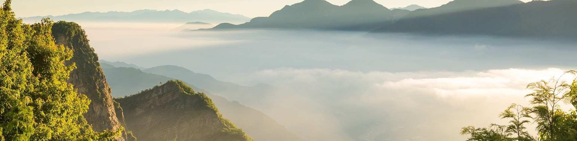 Alishan Taipei Taiwan montagnes nature