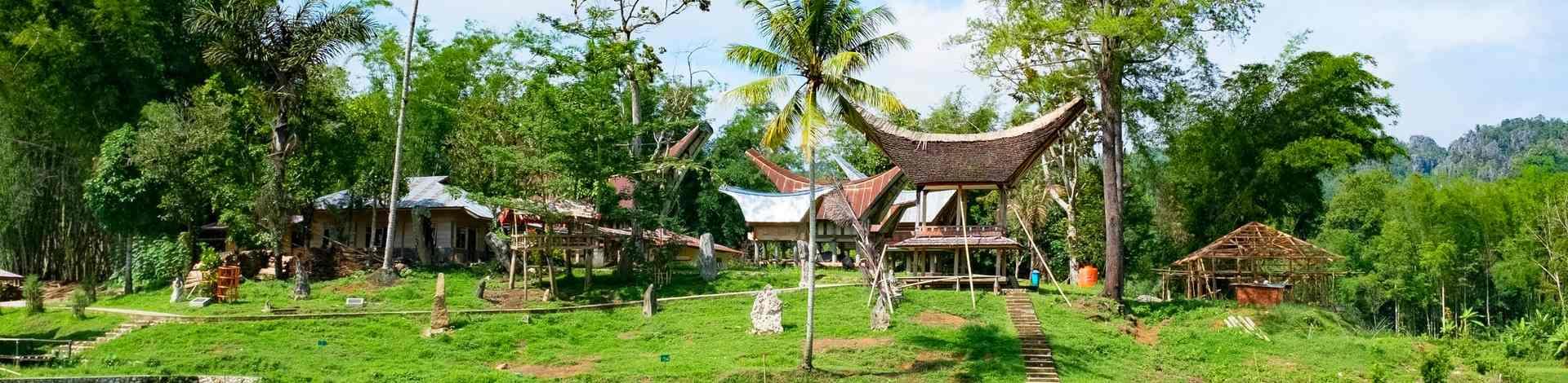 Célèbes Sulawesi Pays Toraja