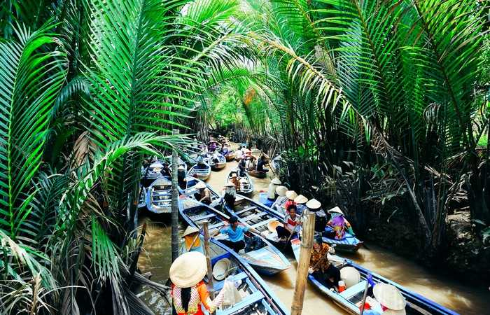 Delta Mékong barques végétation arroyos palmiers