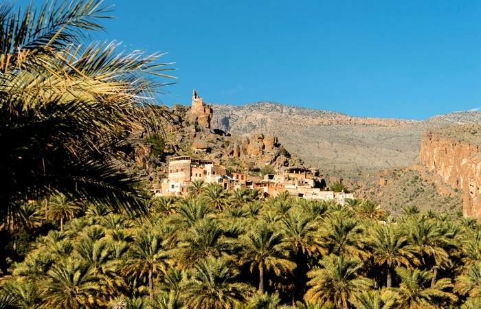 Misfat Al Abriyeen village Oman palmiers