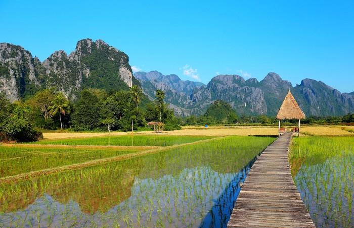 Rizières Nord Laos Pakbeng Muang Ngoi