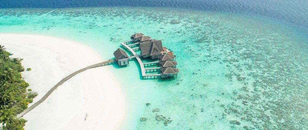 hotel maldives paradis plage palmiers