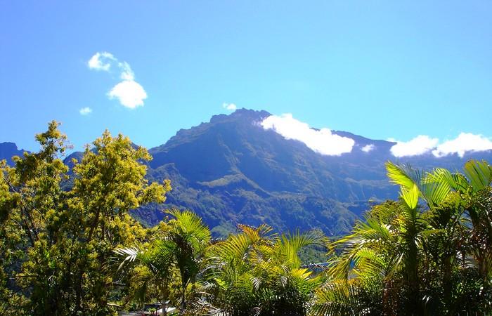 Montagnes Mafate végétation