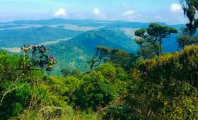 Randonnée Horton Plains Sri Lanka