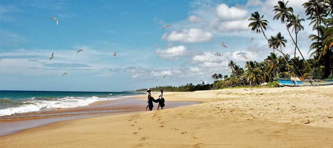 Plage Sri Lanka Mirissa Unawatuna